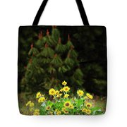 Balsamroot And Evergreen Tote Bag