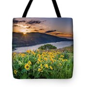 Balsamroot At Sunrise Tote Bag