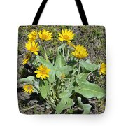 Balsamroot Tote Bag