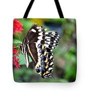 Baltimore Checker Spot Butterfly Tote Bag