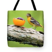 Baltimore Oriole Having Breakfast This Morning Tote Bag