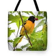 Baltimore Oriole With Raspberry  Tote Bag