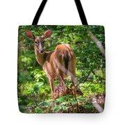 Bambi's Mom Tote Bag