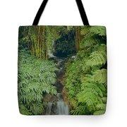 100837-bamboo And Ferns Creek  Tote Bag