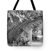 Bamboo Black White Rip Van Winkle Gardens  Tote Bag