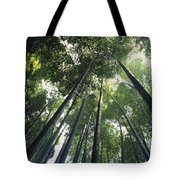 Bamboo Forest Tote Bag by Mitch Warner - Printscapes