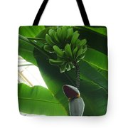 Banana Plant Kew London England Tote Bag