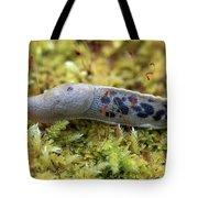 Banana Slug Closeup In Moss Tote Bag