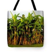 Banana Trees Tote Bag