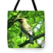 Bandit Bird Tote Bag