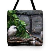 Bandit Birds Tote Bag