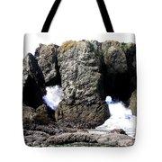 Bandon 17 Tote Bag