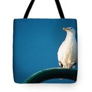 Bandon Seagull. Tote Bag