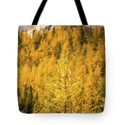 Banff Golden Larch Dream World Tote Bag