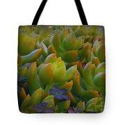 Bank Of Succulents Tote Bag