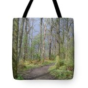 Banks Of Loch Lomond, Scotland Tote Bag