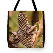 Banksia Cone 2 Tote Bag