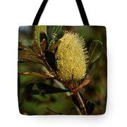 Banksia Syd01 Tote Bag