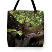 Banyan Sky Tote Bag
