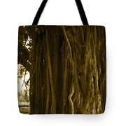 Banyan Surfer - Triptych  Part 1 Of 3 Tote Bag