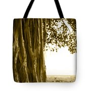 Banyan Surfer - Triptych  Part 2 Of 3 Tote Bag