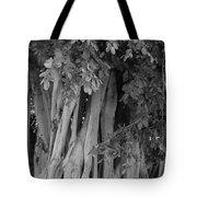 Banyans Tote Bag