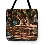 Banyans - Marie Selby Botanical Gardens Tote Bag