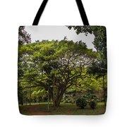Banyon Monkeypod Landscape II Tote Bag