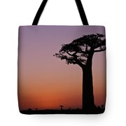 Baobab At Sunset Tote Bag