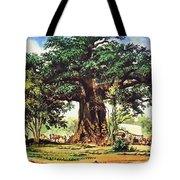 Baobab Tree - South Africa Tote Bag
