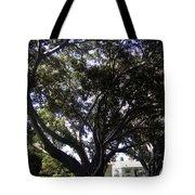 Baobab Trees In Los Angeles Tote Bag