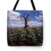 Baobaba Tree Tote Bag