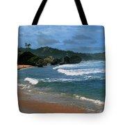 Barbados Berach Tote Bag