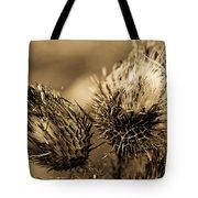 Barbed Beauties Tote Bag