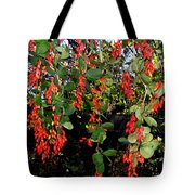 Barberries Tote Bag