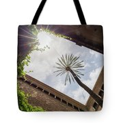 Barcelona Courtyard With Palm Tree Tote Bag