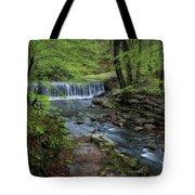 Bard Springs Tote Bag