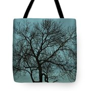 Bare Branches And Storm Clouds Tote Bag