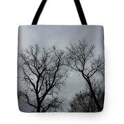 Bare, Raw, Cold Winter Day  Tote Bag