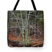 Bare Tree And Boulders In Mark Twain Forest Tote Bag