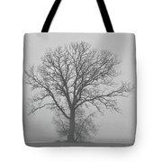 Bare Tree In Fog Tote Bag