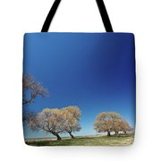 Bare Trees Along Shore Of Lake Manitoba Tote Bag