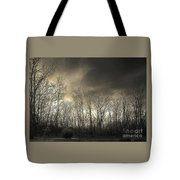 Bare Trees In A Winter Sunset Tote Bag