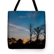 Bare Trees Tote Bag