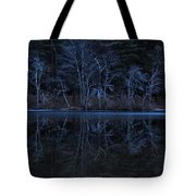 Bare Trees Reflected Tote Bag