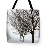 Bare Winter Trees Tote Bag