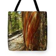Bare Wood Tote Bag