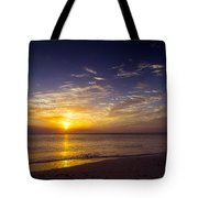 Barefoot Beach Preserve Sunset Tote Bag