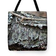 Bark - Lichen - Cat Brier Tendrils Tote Bag
