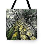 Bark Up The Tall Pine Tree Abstract In Felicina  Louisiana Tote Bag